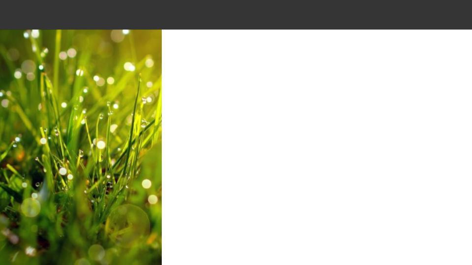 Obrazek posiada pusty atrybut alt; plik o nazwie Pusty-szablon-5.jpg